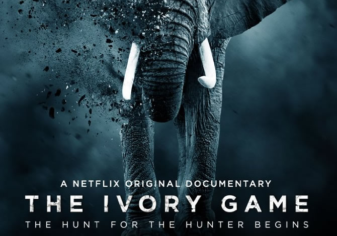 the-ivory-game-film-poster.jpg